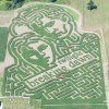 Pierce County Pumpkin Patches & Corn Mazes