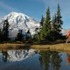 Things to do This Summer at Mt. Rainier National Park