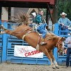 The Roy Pioneer Rodeo